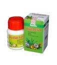 Imis Vydactin - detoxikace a snížení cholesterolu, 60 kapslí