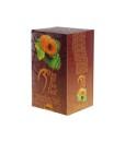 Biogena Nopál čaj s meruňkou, 20 sáčků